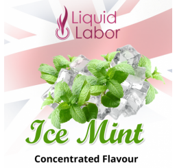 LIQUID LABOR - Ice-Mint